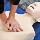 cpr hands on manikin shrunk